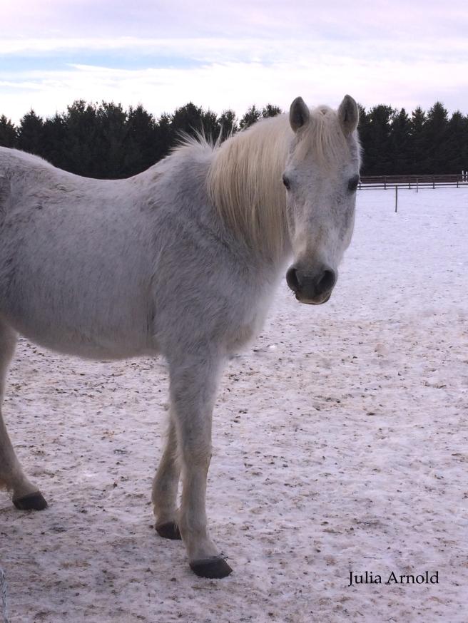 Edited White Horse