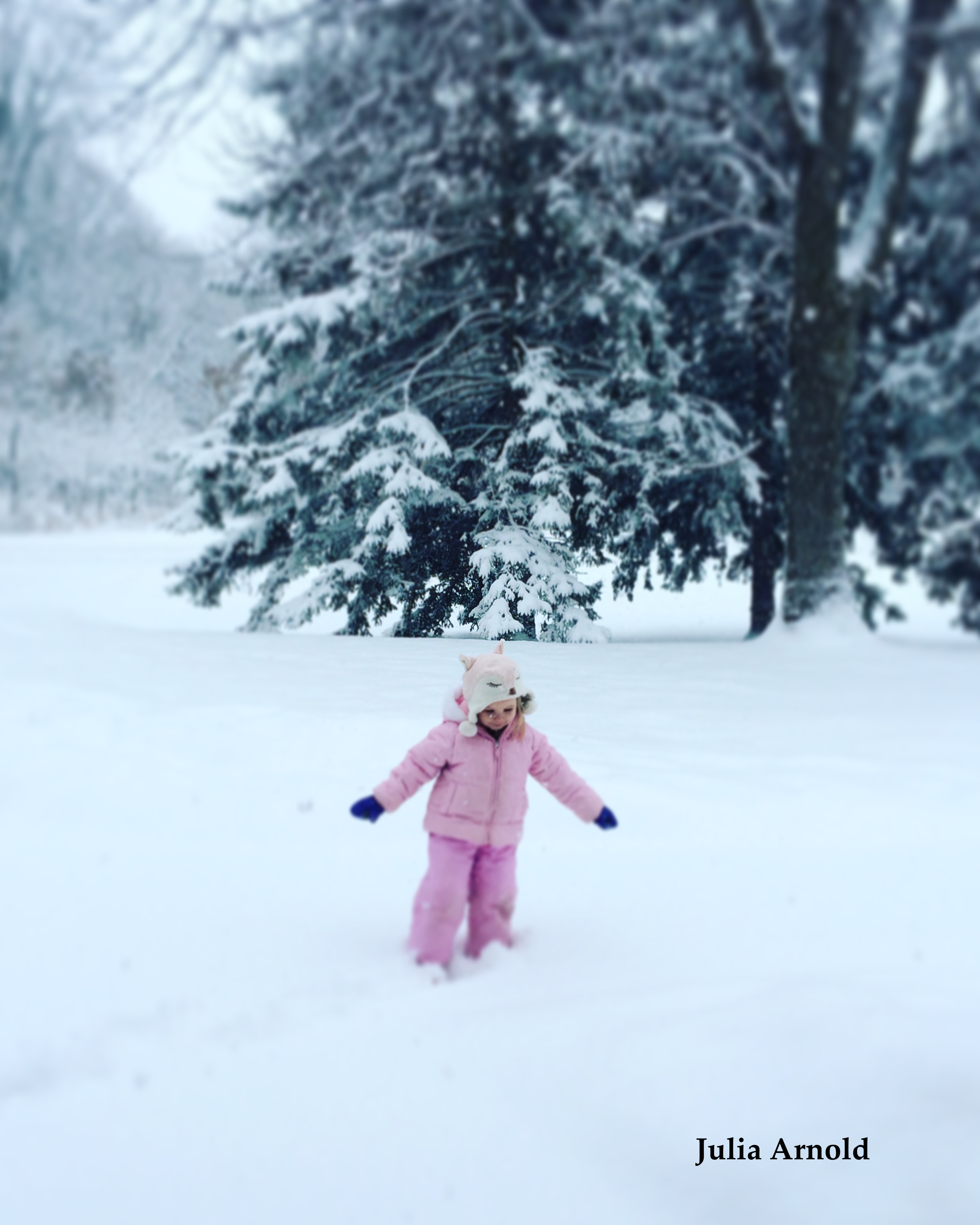 Pink Bunny in the Snow