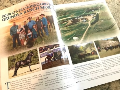Feature in The Morgan Horse (April/May 2018)